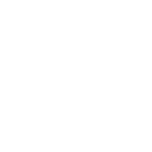 canmore rocky mountain inn logo